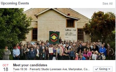 Meet the Candidates for Merlynston